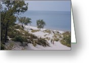 Midwestern States Greeting Cards - Indiana Dunes State Park Provides Greeting Card by B. Anthony Stewart