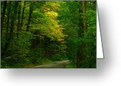 Indiana Autumn Greeting Cards - Indiana Road Greeting Card by Joyce L Kimble