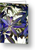 Brown Framed Prints Greeting Cards - Indigo Bliss Greeting Card by Denise Oldridge