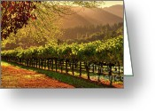Sunset Greeting Cards - Inglenook Winery Greeting Card by Mars Lasar