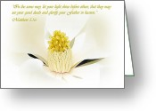 Magnolia Grandiflora Greeting Cards - Inner Light Greeting Card by Blair Wainman