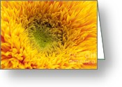 Sunflower Studio Art Greeting Cards - Inner Sunflower Greeting Card by Anne Gilbert