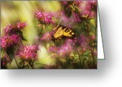 Feeding Greeting Cards - Insect - Butterfly - Golden Age  Greeting Card by Mike Savad