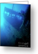 Misfortune Greeting Cards - Inside the Chaouen shipwreck Greeting Card by Sami Sarkis