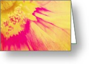 Flower Picture Greeting Cards - Inspiration Greeting Card by Angela Doelling AD DESIGN Photo and PhotoArt