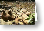 Nature Sculpture Greeting Cards - Installation by the River Greeting Card by Piety DSILVA