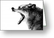 Howl Greeting Cards - Intense Gray Wolf Portrait  Greeting Card by Stephanie McDowell