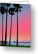Intercoastal Greeting Cards - Intercoastal Sunset Greeting Card by Bill Cannon