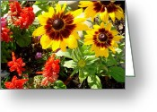 Bella Greeting Cards - Interesting Yellow Flowers Greeting Card by Bella