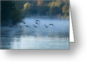 Lake Low Country Greeting Cards - Into the Mist Greeting Card by Andrew  Michael
