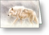 Wolf Song Studio Greeting Cards - Into The Mist Greeting Card by Sandi Baker