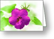 Graden Digital Art Greeting Cards - Inversed Hibiscus Greeting Card by Linda Phelps