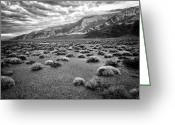 Fault Block Greeting Cards - Inyo Mountain Morning in Black and White Greeting Card by Troy Montemayor