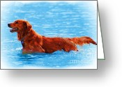 John Kolenberg Greeting Cards - Ipo Swimming At The Lake Greeting Card by John  Kolenberg