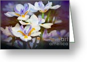 Stamen Greeting Cards - Iris Art Greeting Card by Kaye Menner
