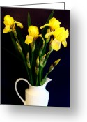 Decor Floral Picture Cards Greeting Cards - Iris Bouquet Greeting Card by Marsha Heiken