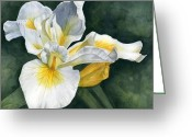 Photorealism Greeting Cards - Iris Greeting Card by Katelyn Arquette