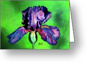Flag Drawings Greeting Cards - Iris Greeting Card by Laura Bell