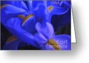 Blue Flowers Digital Art Greeting Cards - Iris Sparkle Greeting Card by Roxy Riou