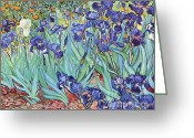 1889 Greeting Cards - Irises Greeting Card by Pg Reproductions