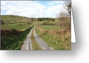 Rural Road Greeting Cards - Irish country road Greeting Card by John Quinn