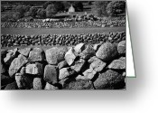 Granite Walls Greeting Cards - Irish Dry Stone Walls Walled Fields Countryside County Down Ireland Greeting Card by Joe Fox