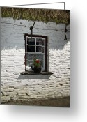 Ireland Greeting Cards - Irish Kettle of Geraniums County Cork Ireland Greeting Card by Teresa Mucha
