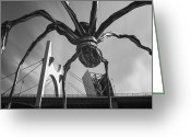 Arquitectura Greeting Cards - Iron spider Greeting Card by Fernando Alvarez