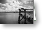 Gray-scale Greeting Cards - Irrigation Pond Greeting Card by Idaho Scenic Images Linda Lantzy