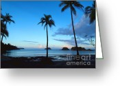 Key West Island Greeting Cards - Isla Secas Greeting Card by Carey Chen