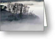 Commencement Bay Greeting Cards - Island in the Morning Mist Greeting Card by Sean Griffin