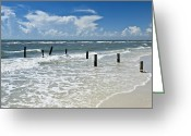 Gulf Of Mexico Greeting Cards - Isnt life wonderful? Greeting Card by Melanie Viola