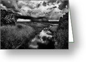 Christopher Holmes Photography Greeting Cards - Isolated Shower - BW Greeting Card by Christopher Holmes