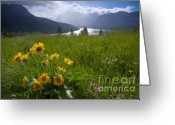 Glacier Greeting Cards - Isolated Showers Greeting Card by Idaho Scenic Images Linda Lantzy