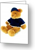 Lynnette Johns Greeting Cards - Isolated Teddy Bear Greeting Card by Lynnette Johns