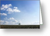 Alone Greeting Cards - Isolated tree Greeting Card by Bernard Jaubert