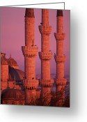 Islam Greeting Cards - Istanbul, Turkey, Blue Mosque Greeting Card by Grant Faint