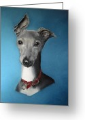 Dogs Pastels Greeting Cards - Italian Greyhound on blue Greeting Card by Juliet Matthews