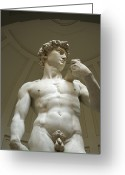 Michelangelo Greeting Cards - Italy, Florence, Statue Of David Greeting Card by Sisse Brimberg & Cotton Coulson