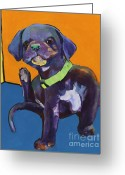 Black Lab Puppy Greeting Cards - Itchy Greeting Card by Pat Saunders-White