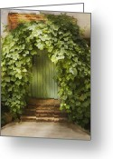 Entrance Door Greeting Cards - Ivy door Greeting Card by Sharon Foster