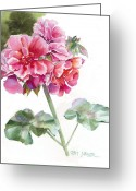 Flowers Greeting Cards Greeting Cards - Ivy Geranium Molina Greeting Card by Pat Yager