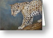 Fine Art - Animals Greeting Cards - Jaguar Cub Greeting Card by Enzie Shahmiri