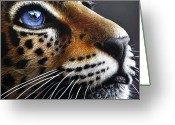 Wild Greeting Cards - Jaguar Cub Greeting Card by Jurek Zamoyski