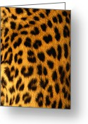 Black Leopard Greeting Cards - Jaguar Fur Greeting Card by Siede Preis