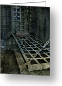 Window Prints Posters Greeting Cards - Jailbird Cage  Greeting Card by Jerry Cordeiro