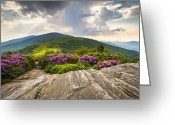 Appalachian. Greeting Cards - Jane Bald in Bloom - Roan Mountain Highlands Landscape Greeting Card by Dave Allen