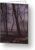 Etherial Greeting Cards - January fog 1 Greeting Card by Anita Burgermeister