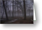 Etherial Greeting Cards - January fog 2 Greeting Card by Anita Burgermeister
