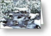 Wv Greeting Cards - January in West Virginia Greeting Card by Thomas R Fletcher
